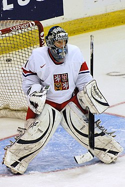 Pavel Francouz CZE at the 2010 World Junior Ice Hockey Championships.jpg