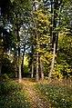 Pekhra-Yakovlevskoye Park 02.jpg