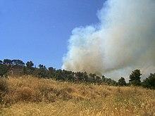 Peloponnese fire.jpg