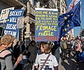 People's Vote March 2018-10-20 - Give me 1 good reason to leave, I'll give you 10 reasons to stay. Fromage not Farage. No to Brexit.jpg