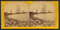 Peshtigo Cor. dock on Green Bay, by Carbutt, John, 1832-1905.png