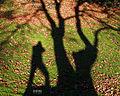 Pho-Shadow (15997171144).jpg