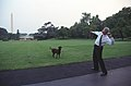 Photograph of President William Jefferson Clinton Throwing a Tennis Ball to Buddy the Dog- 07-11-1998 (6461539719).jpg