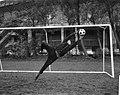 Piet Schrijvers tijdens het stoppen van de bal, Bestanddeelnr 918-3969.jpg