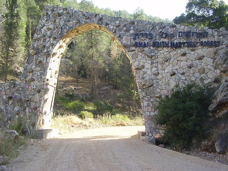 הכניסה ליער הקדושים