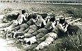 PikiWiki Israel 345 Kibutz Gan-Shmuel sk6- 38 גן-שמואל-הגפירים באימון ירי 1936.jpg