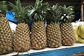 Pine apple for sale at lalbagh7469.JPG