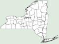 Pinellia ternata NY-dist-map.png