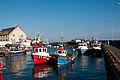 Pittenweem Harbour, Fife, Scotland, 28 Sept. 2011 - Flickr - PhillipC.jpg