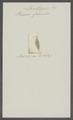 Planaria fulva - - Print - Iconographia Zoologica - Special Collections University of Amsterdam - UBAINV0274 105 05 0003.tif