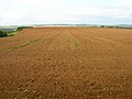 Ploughed Field near Froghill Farm - geograph.org.uk - 508686.jpg