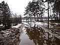 Pludi druvciema 2011 - panoramio (4).jpg