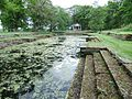 Pond and Summerhouse - Blagdon Hall Estate, Blagdon, Northumberland.jpg