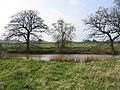 Pond at Pot End - geograph.org.uk - 157121.jpg