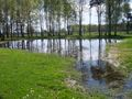 Pond in the nearby of Crematorium V in Auschwitz II.jpg