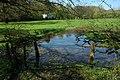 Pond near Llangibby Castle Farm - geograph.org.uk - 1268582.jpg