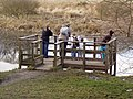Pond viewing platform at Den of Maidencraig - geograph.org.uk - 1763165.jpg