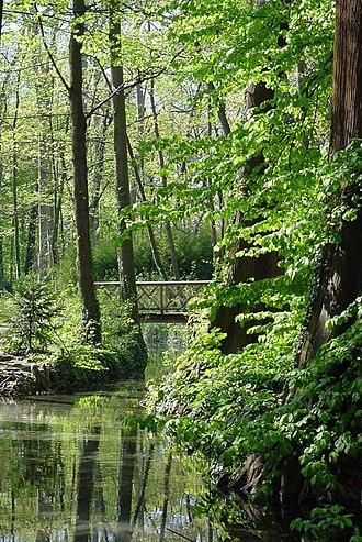 Parc de la Tête d'or - A small wooden bridge