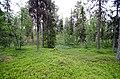 Porjus Sweden - panoramio (7).jpg