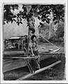Portrait of Faase, the Taupo, or Official Virgin, of Fagaloa Bay, and Her Duenna, Samoa MET 187070.jpg