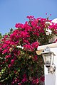 Portugal 20140801-DSC00802 (20734327254).jpg