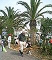 Potential natural vegetation tree planting supervise Dr.Akira Miyawaki.jpg