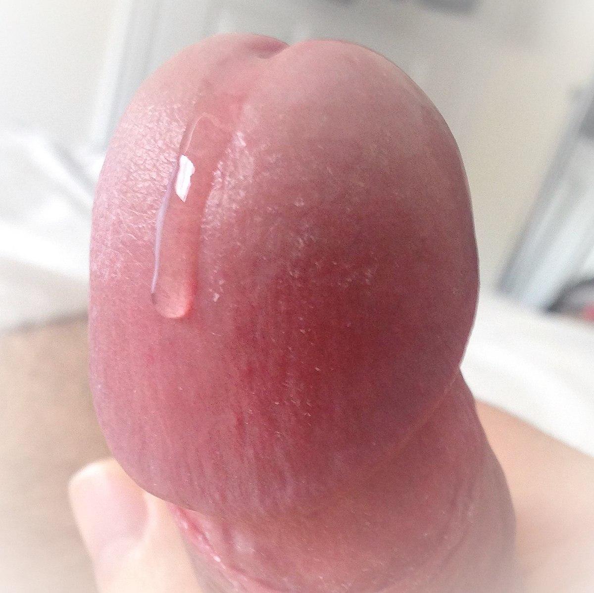 Un culo en la escuela de la che guebara - 3 part 6