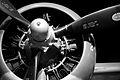 Propeller - 2.jpg