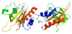 Protein PFN1 PDB 1awi.png