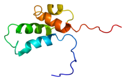 Protein POLB PDB 1bno.png