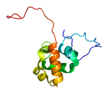 Protein SASH1 PDB 2dl0.png