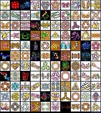 Protein mosaic.jpg
