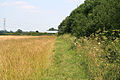 Public Footpath near Cotgrave, Nottinghamshire - geograph.org.uk - 195869.jpg