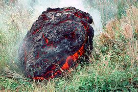 Puu Oo - boulder Royal Gardens 1983.jpg