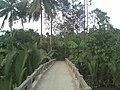 Quới Thiện, Vũng Liêm, Vĩnh Long, Vietnam - panoramio (10).jpg