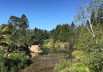 Quarryhill Botanical Garden - A view looking northeast across the lower pond at Quarryhill Botanical Garden, an internationally recognized wild Asian woodland garden in Sonoma Valley.