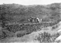 Queensland State Archives 5819 Water supply for the village Mabuiag Island June 1931.png