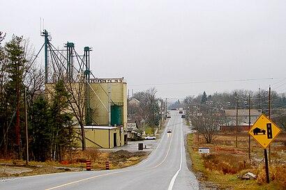 Como chegar até Queensville, Ontario com o transporte público - Sobre o local