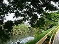 Río La Vieja 2. Cartago, Valle, Colombia.JPG
