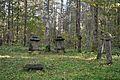 Raikküla mõisa kalmistu.jpg