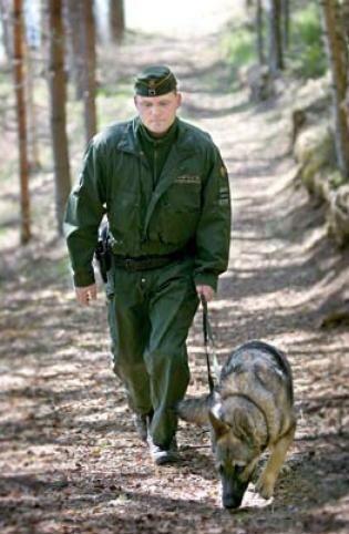 Rajavartija koiran kanssa