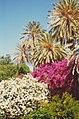 Rhodes Town, Public Gardens-4422951408.jpg