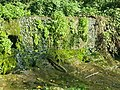 Riera de Vilalleons - panoramio (1).jpg