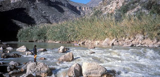 Rio Grande Wild and Scenic River