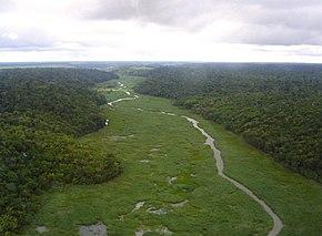 Vista aérea do Rio Preto (um dos afluentes do Rio Itaúnas) localizado no interior da Floresta Nacional.
