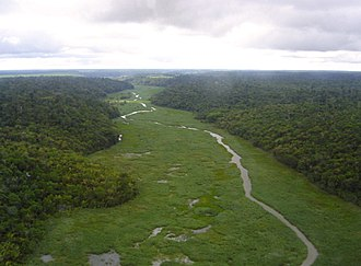 National forest (Brazil) - Rio Preto National Forest