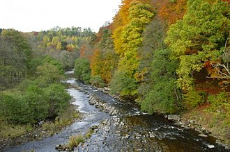 River Allen, Northumberland - Image: River Allen, taken from the Cupola Bridge at Whitfield geograph.org.uk 5753