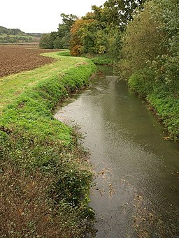 River Cary - geograph.org.uk - 1014500