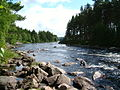 River Dee - geograph.org.uk - 101826.jpg