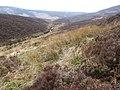 River Derwent - geograph.org.uk - 1246655.jpg